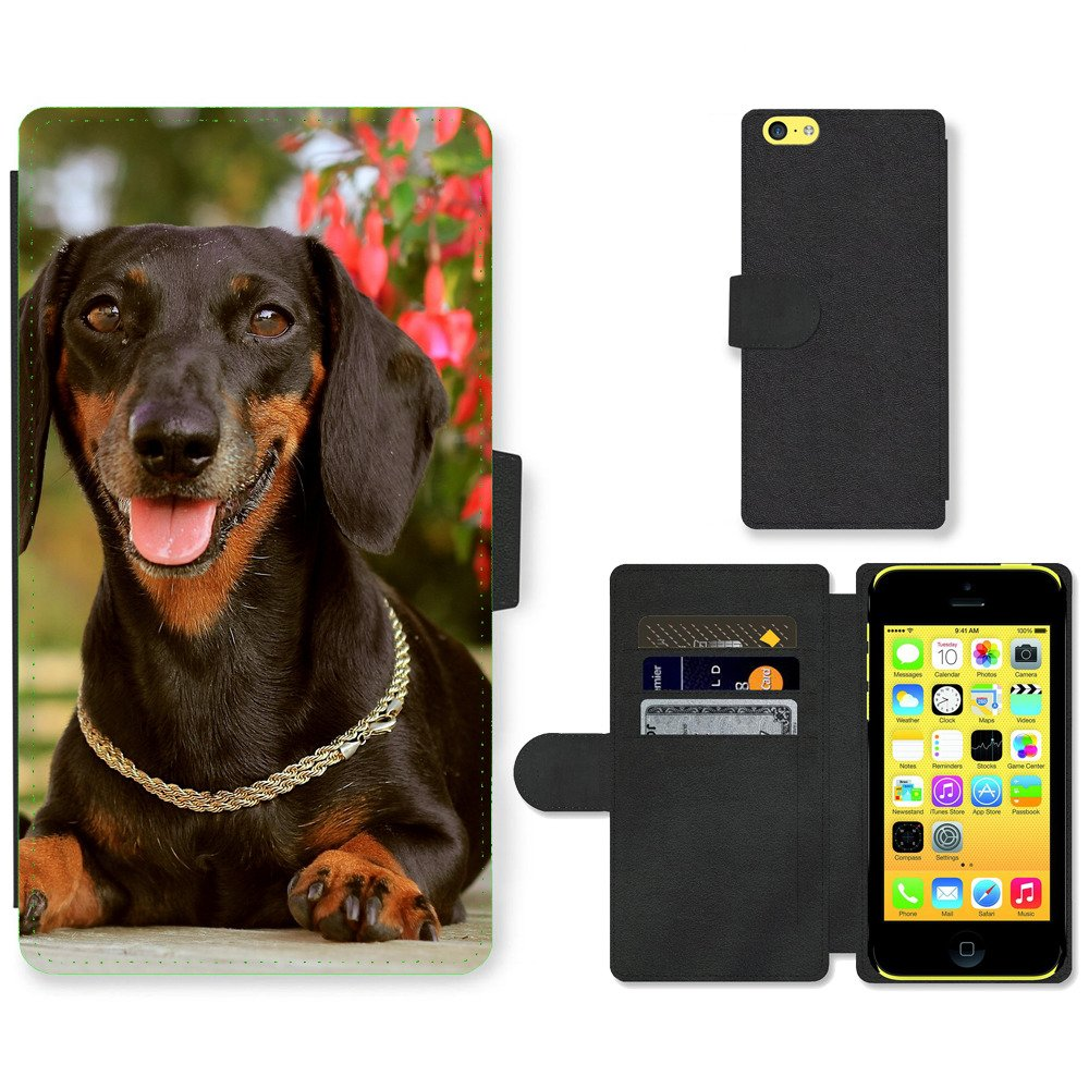 Phone-Card-Slot-PU-Leather-Wallet-Case-For-Apple-iPhone-Dachshund-dog-wih-neck-c